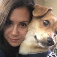Alexa's dog day care