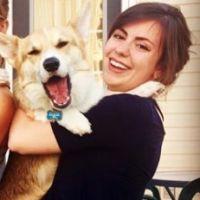 Kaycee's dog day care