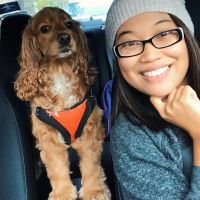 Nessa's dog boarding