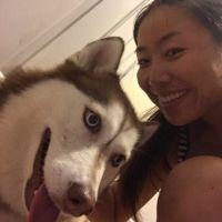 dog walker Wanjun
