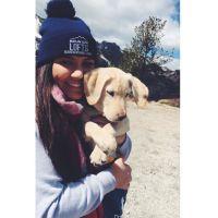 Brianna's dog day care