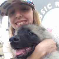 Renata's dog boarding