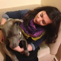 Oana's dog day care