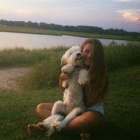 Haley's dog day care