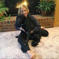 Karen's dog day care
