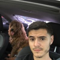 Felipe's dog boarding
