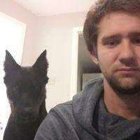 Bradley's dog day care