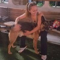 Iryna's dog boarding