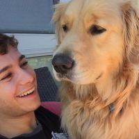 Daniel's dog boarding
