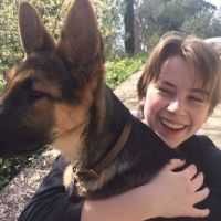 Cambria's dog day care