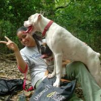 Jolene's dog day care