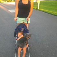 dog walker Kyleen