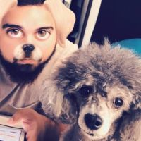 carlos's dog day care