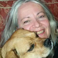 Deborah Ann's dog day care