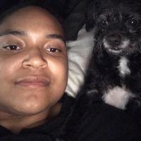 dog walker Tawny