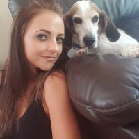 Lori's dog day care