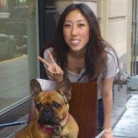 Junia's dog boarding