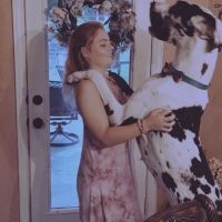 house sitter Lexi