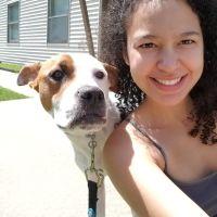 Annyoceli's dog day care