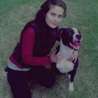 Caro's dog day care