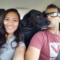 Kristine's dog boarding