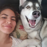 Oriana's dog day care