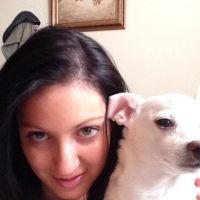 Marisa's dog day care