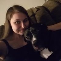 Maressa's dog day care