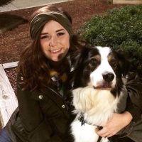 Katherine's dog boarding