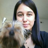 Alma's dog day care
