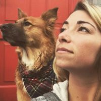 Lexi's dog boarding