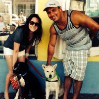 Amanda and Matt's dog day care