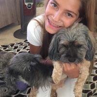 Maria's dog boarding