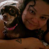 Kateri's dog day care