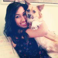 Manmeet's dog day care