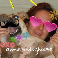 Annie's dog day care