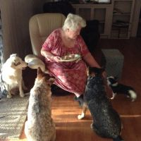 pet sitter Noreen