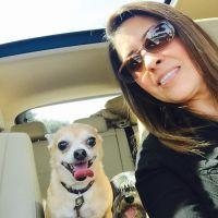 Tanya's dog boarding