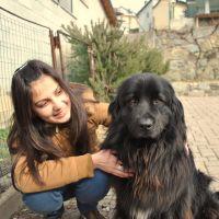 dog walker Olha