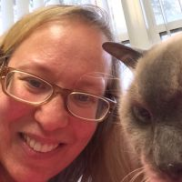 Adeel's dog day care