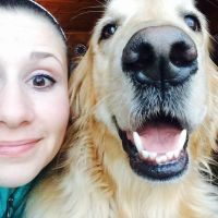 Adriane's dog day care