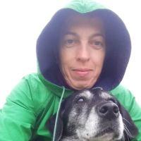 Elitsa's dog day care