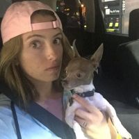 Matilde's dog boarding