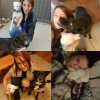 pet sitter Kelley
