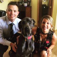 Caitlin's dog day care