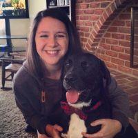 Christie's dog day care