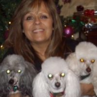 pet sitter Connie