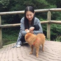 Yaoqi's dog boarding