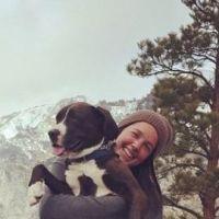 Brigitte's dog day care
