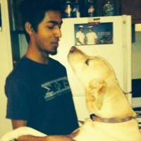 Pratik's dog boarding